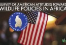 IEI's Second Survey of American Attitudes Toward Wildlife Policies In Africa
