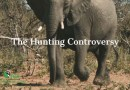 The Hunting Controversy