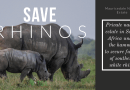 Private Rhino Farmer Forced into Selling Prime Nature Estate to Save 1732 Rhinos