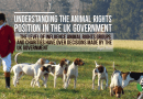 Understanding the Animal Rights Situation in the UK