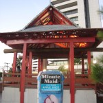 Bra Fortaleza Japanese Garden 0211