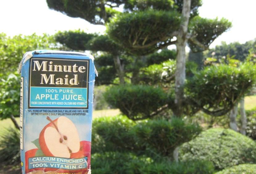 dr-botanical-garden-japanese-07-e1419220719508