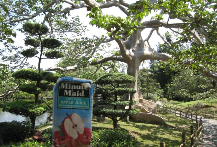 dr-botanical-garden-japanese-25-e1419220481605