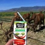 ut-rush-valley-elk-farm-01