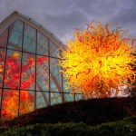 Chihuly Image - supplementary material for your Book Club.