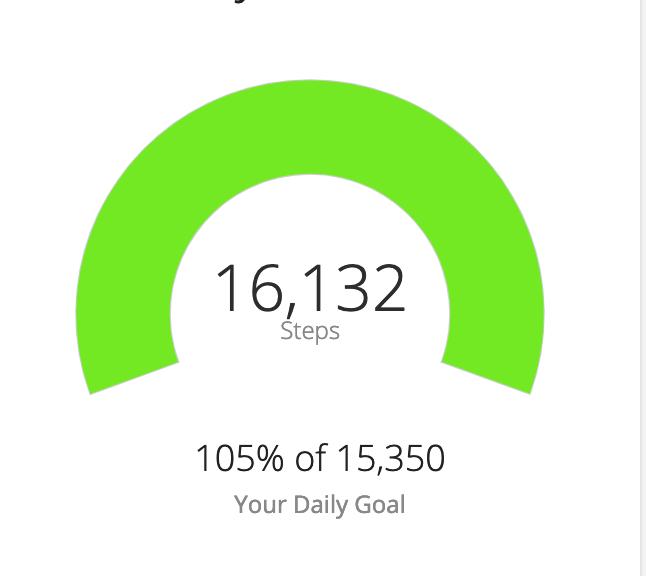 Yesterday I took 16,132 steps