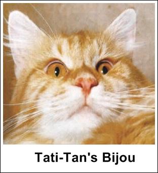 GC Tati-Tan Bijou MCO d 22, født 28 mai 1969