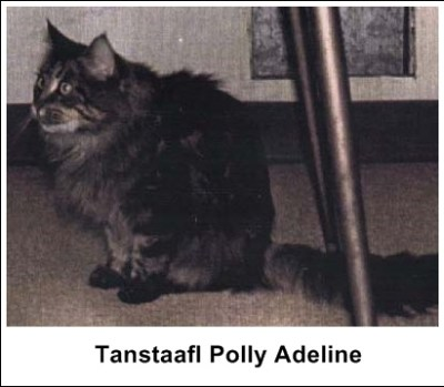 Tanstaafl Polly Adeline