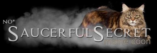 saucerfulsecret-banner