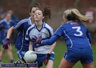 Castleisland Desmonds Ladies Football Team 29-11-2014
