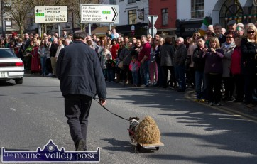 One Man and his Dog: Jimmy Brosnan, Cordal and Spark are greeted with smiles from the crowd as they took part in the 2015 St. Patrick's Day Parade in Castleisland. ©Photograph: John Reidy