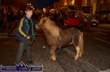 My Little Pony: Dan Geaney taking care of his pony after it had drawn the Crag Cave Sleigh to Lower Main Street for Friday evening's Castleisland Chamber Alliance Street Party. ©Photograph: John Reidy