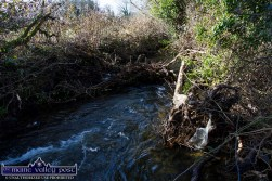 One of the many flood created dams along the river up-stream of the graveyard. ©Photograph: John Reidy