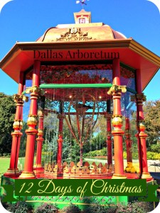 Creating New Holiday Traditions at the Dallas Arboretum