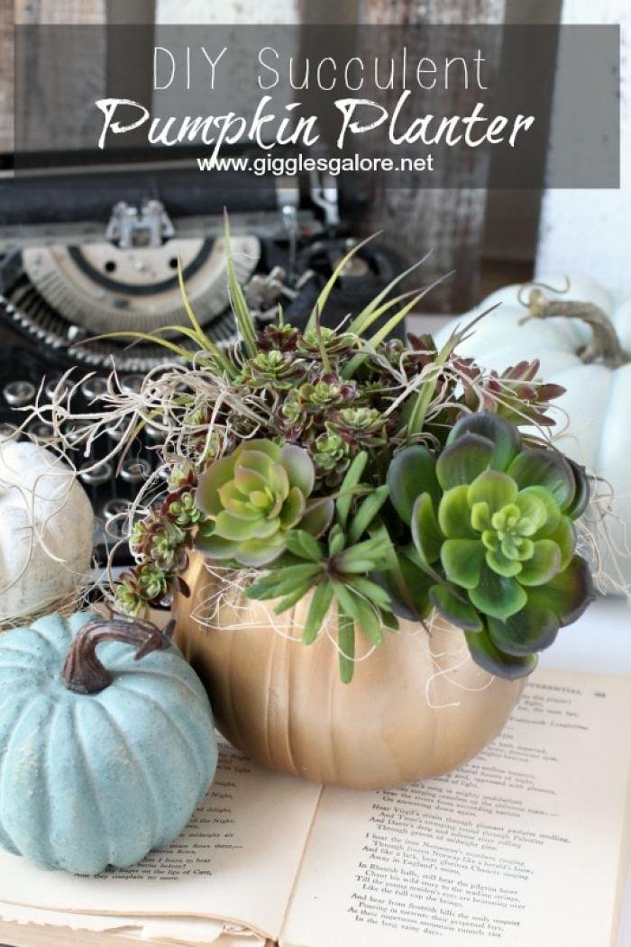 diy-succulent-pumpkin-planter_giggles-galore