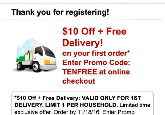 promo-for-free-delivery