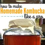 How to Make Homemade Kombucha like a pro