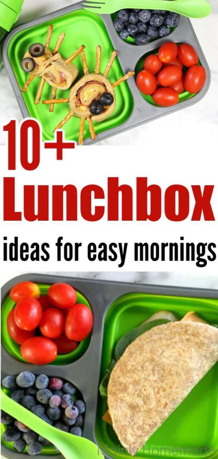 10 Quick and Easy Lunch box Ideas for busy mornings