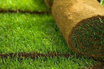 Sod Installation Frisco TX