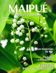 TAPA-MAIPUE22