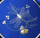 A glittering dragonfly by Anne