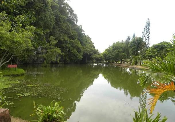 Hutan Lipur Bukit Kubu
