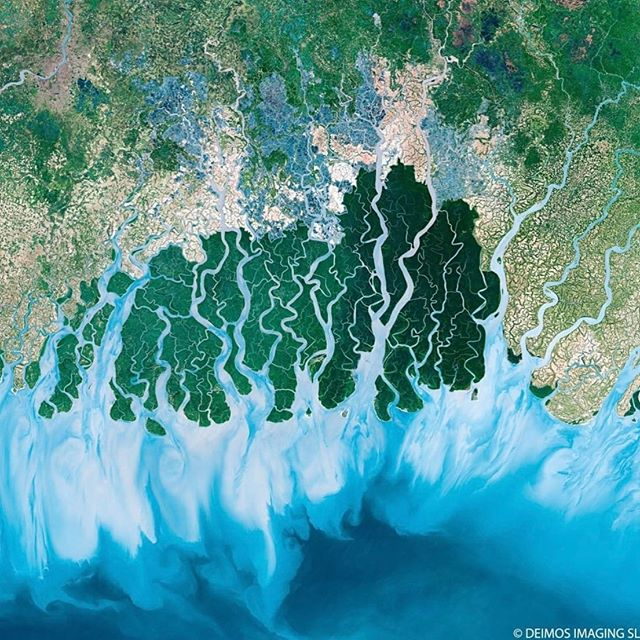 Amazing satellite image of the Sundarbans @bbcearth - the largest delta in the world formed by the confluence of the Ganges, Brahmaputra and Meghna rivers in the Bay of Bengal