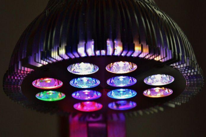 Les ampoules Playbulb Rainbow sont performantes grâce à l'application Playbulb X