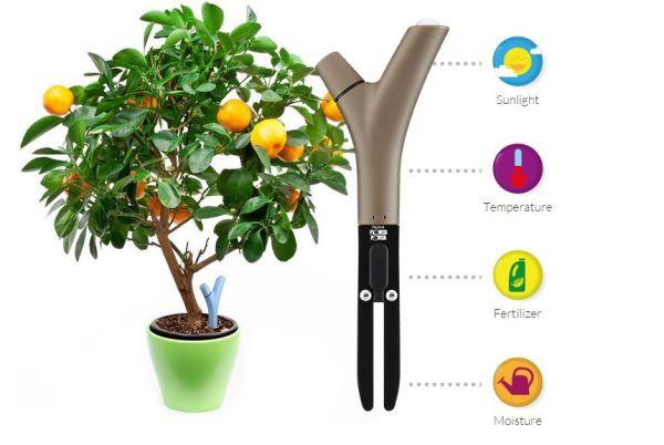 Les paramètres du Parrot Flower Power, arrosage intelligent