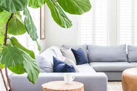 Gray Living Room with Simple Fall Decor   Maison de Pax Update your living room for fall with these six EASY steps   falldecor   falldecorating