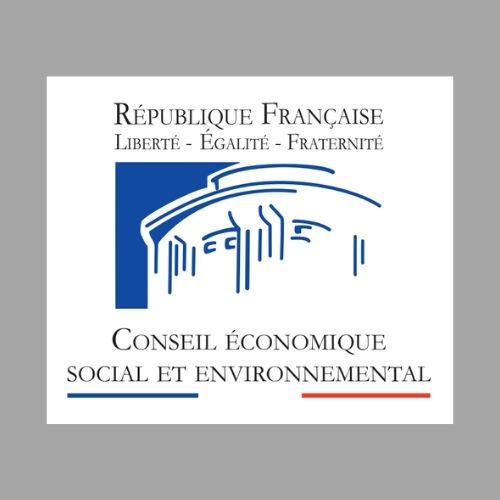 Conseil économique social et environnemental