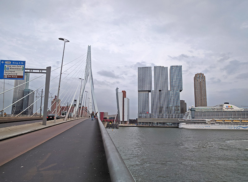 ponte Erasmusbrug Rotterdam