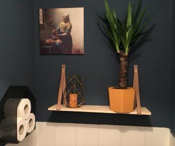 stoer landelijk toilet muurverf