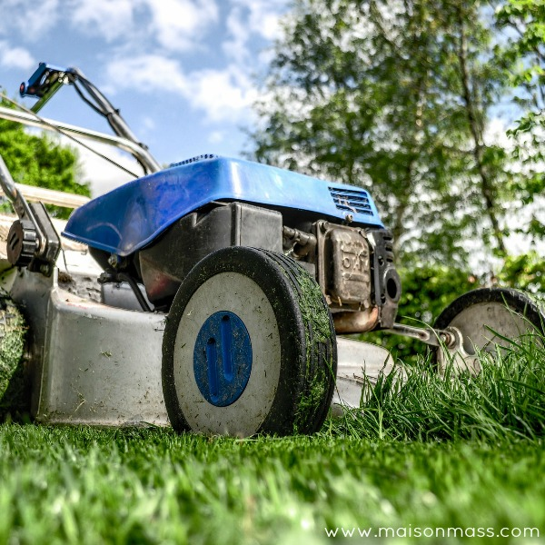 Home Maintenance, Spring Maintenance, Yard Clean Up