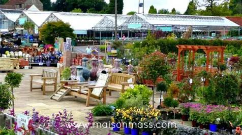 garden ready, bold blooms, nursery