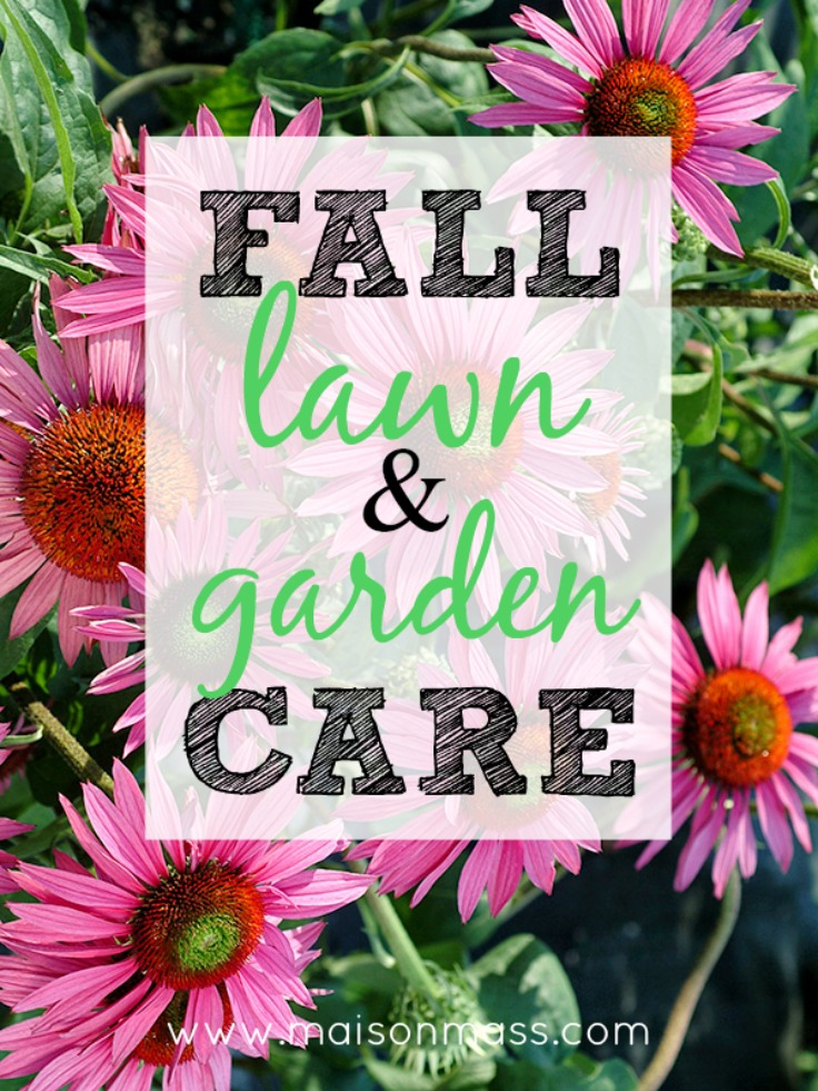 Fall Lawn and Garden Care