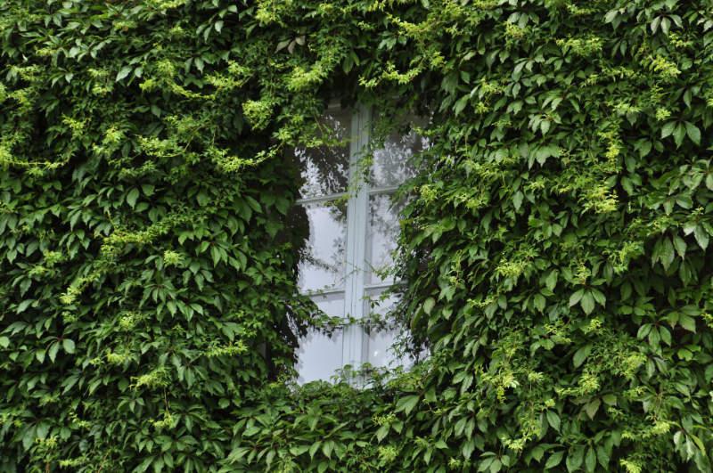 Votre maison consomme-t-elle peu d'énergie ?