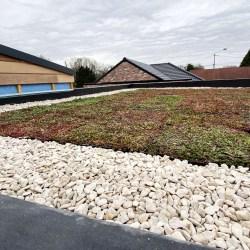 Le 06/04/2020 - Pose de la toiture végétalisée