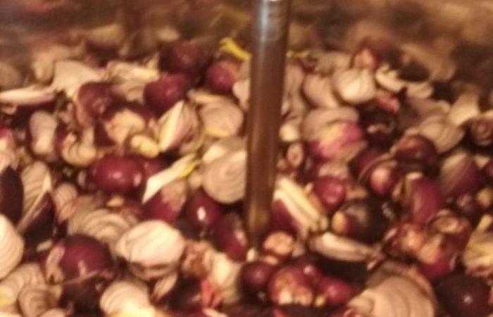 cipolle tagliate julienne con zucchero di canna