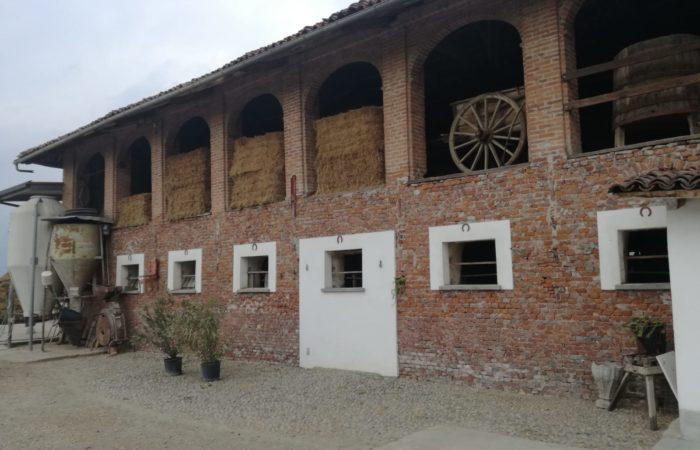Azienda zootecnica del cuneese che alleva bovini di razza piemontese a ciclo chiuso
