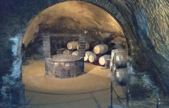 Grotta etrusca all'interno della cantina-2