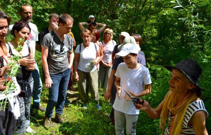 ValdericArte - Lamoli di Borgo Pace_escursione nel bosco