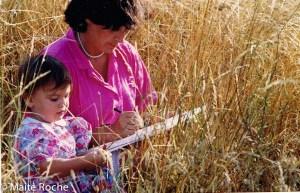 Dans les blés, Maïte Roche, été 91Dans les blés, Maïte Roche, été 91