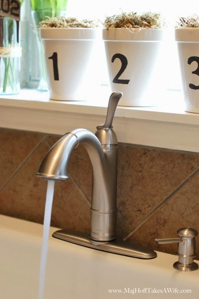 Walden Faucet with Spray stream