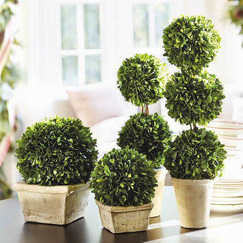 Ballard Designs Topiaries