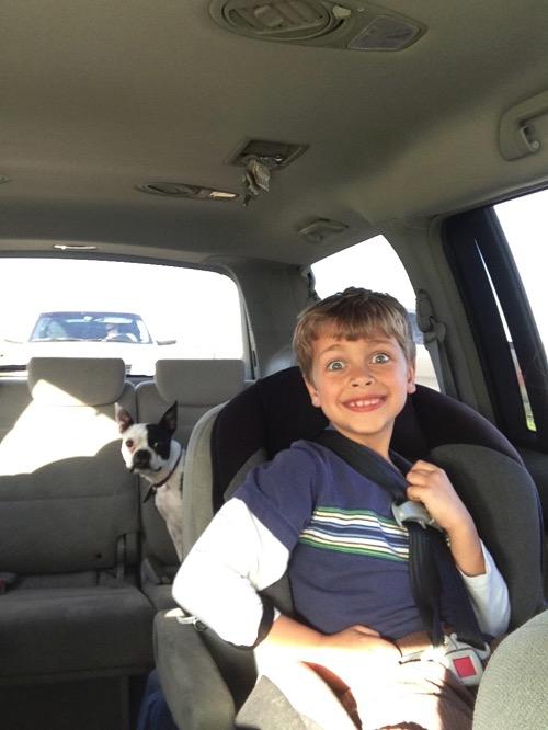 Skipper in the van