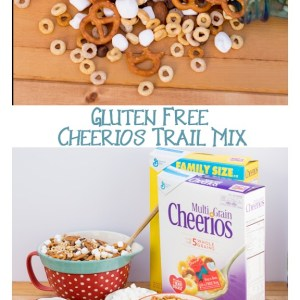 Gluten Free Cheerios Trail Mix