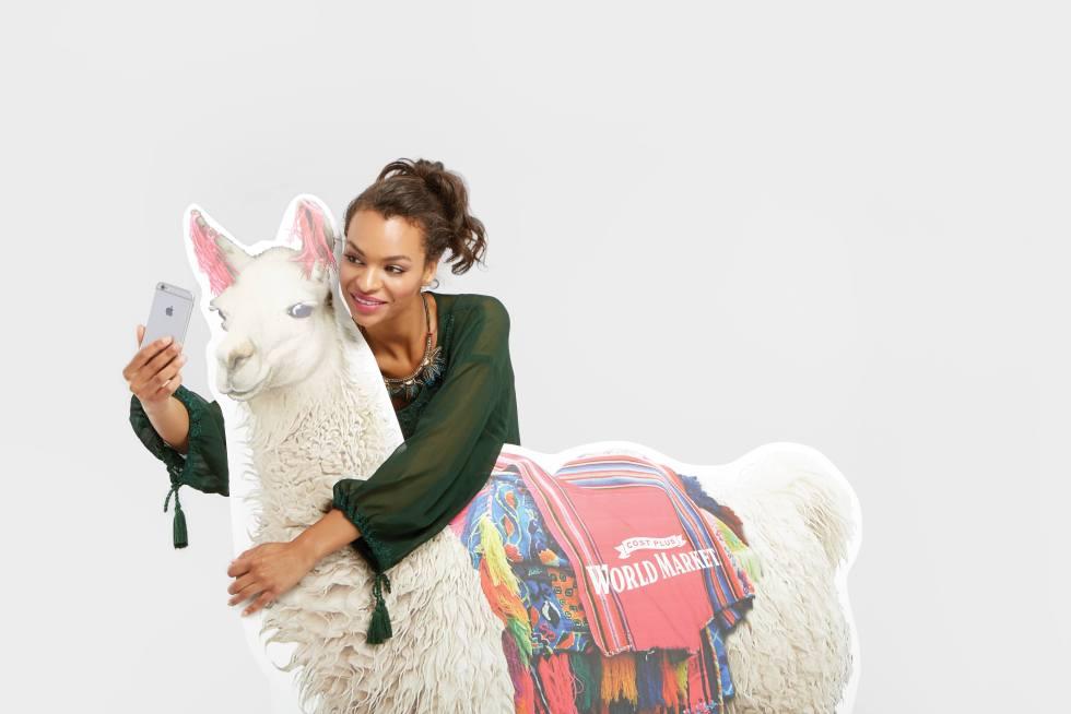 National Llama Day Llama Selfie at World Market