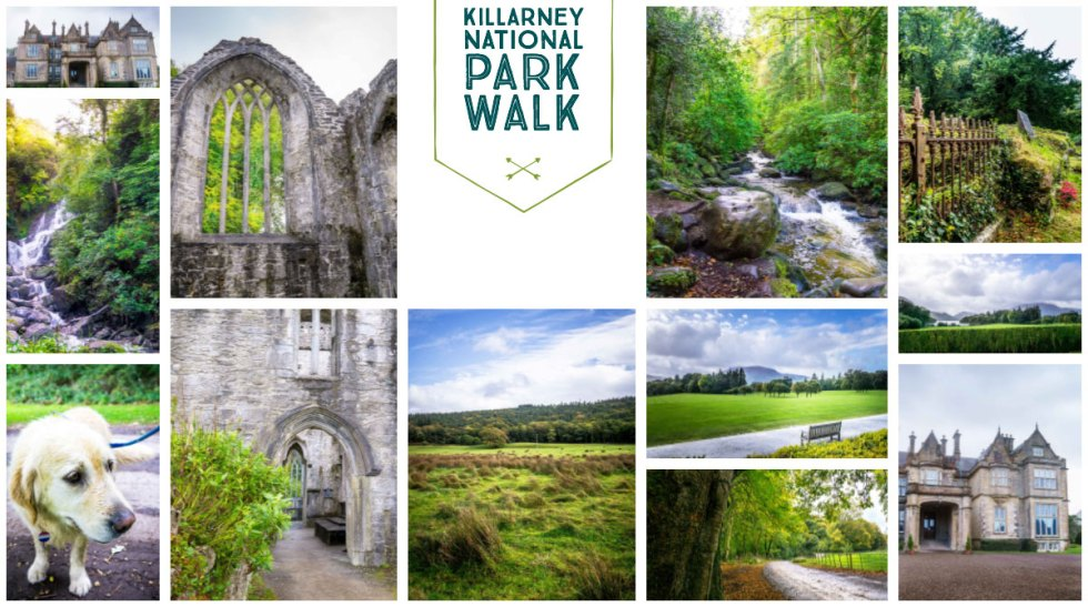 Killarney National Park Walk Sites to see