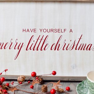 "wooden whitewashed farmhouse sign with ""have yourself a merry little christmas"" in vinyl from an SVG file"